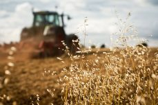 Succession Planning for Farming Businesses